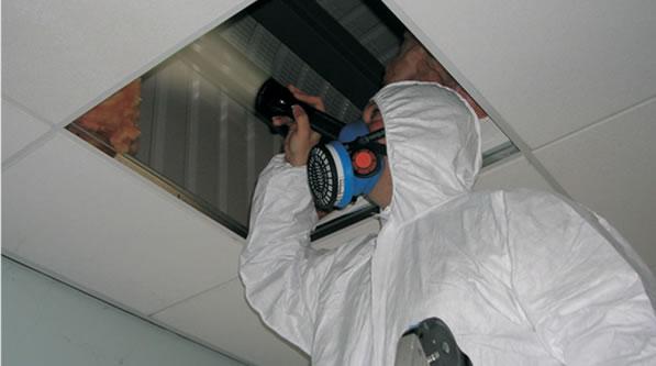 Asbestos Register Environmental Management Solutions